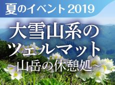 2019年夏のイベント