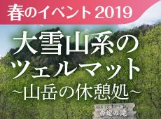 2019年春のイベント